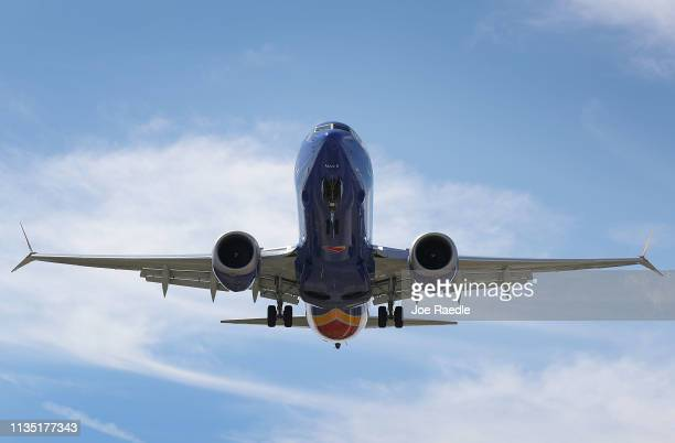 Southwest Boeing 737 Max 8 enroute from Tampa prepares to land at Fort LauderdaleHollywood International Airport on March 11 2019 in Fort Lauderdale...