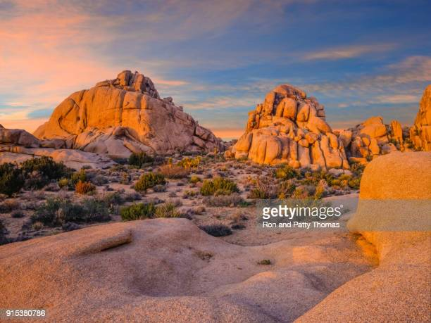 southwest desert usa  at joshua tree national park, ca - joshua tree stock photos and pictures