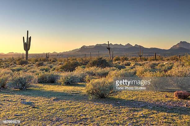 Southwest mountains