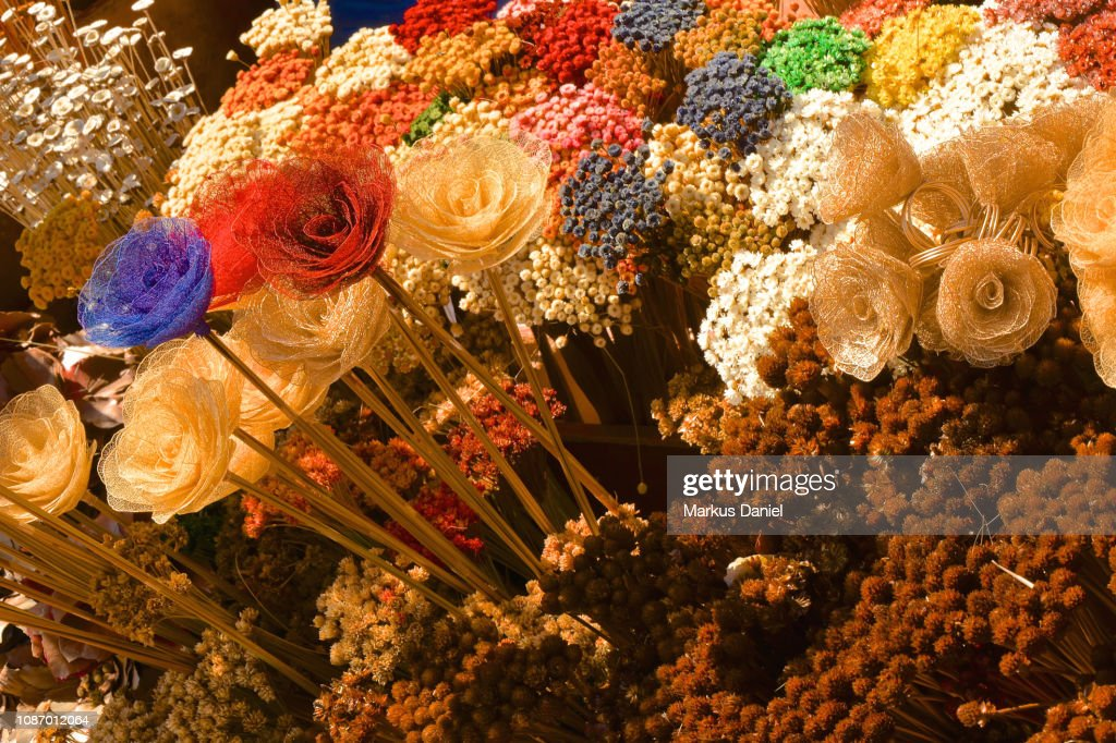 Souvenir Colorful Dried Plants near the Cathedral Of Brasilia : Stock-Foto