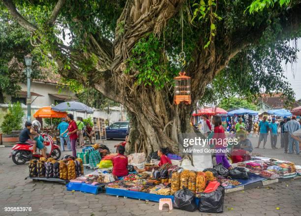 souvenir merchants under a banyon tree at the kraton yogyakarta - kraton stock pictures, royalty-free photos & images