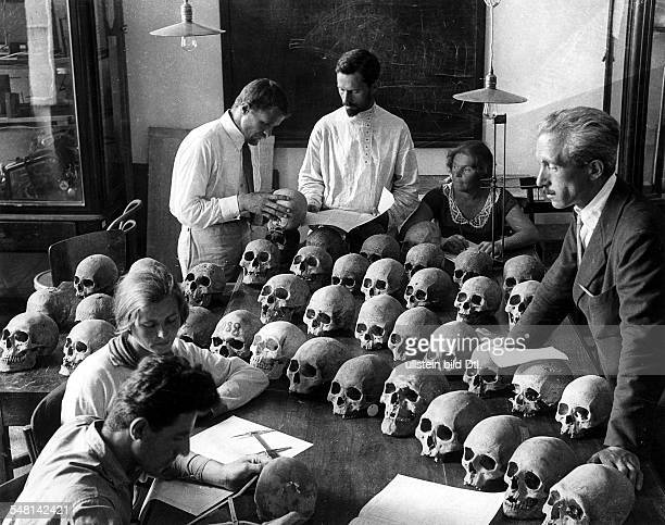Soviet Union Russian SFSR Moscow Collection of skulls in the museum of Moscow University around 1925 Photographer James E Abbe Vintage property of...