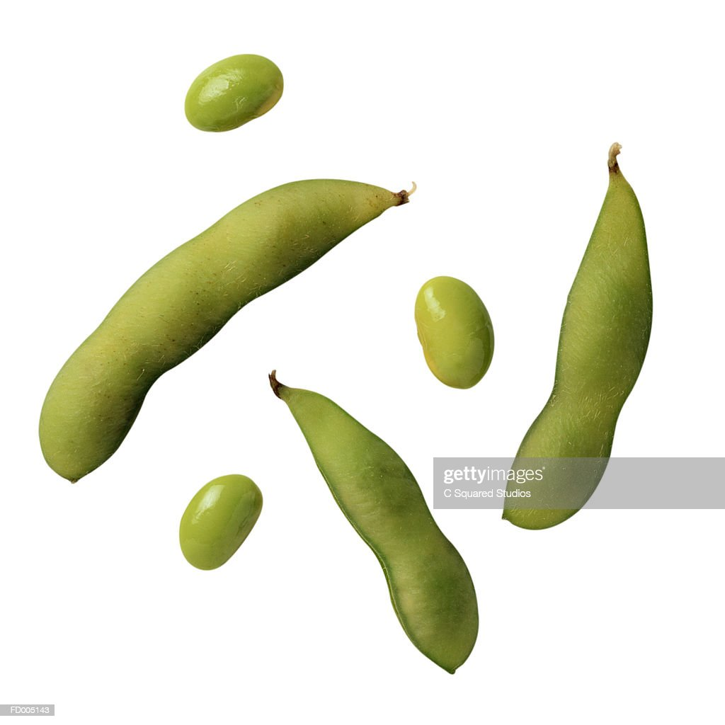 Soy Beans : Stock Photo