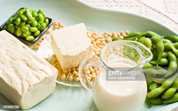 soy milk and soybean products arranged on an aqua tray - soybean stock pictures, royalty-free photos & images