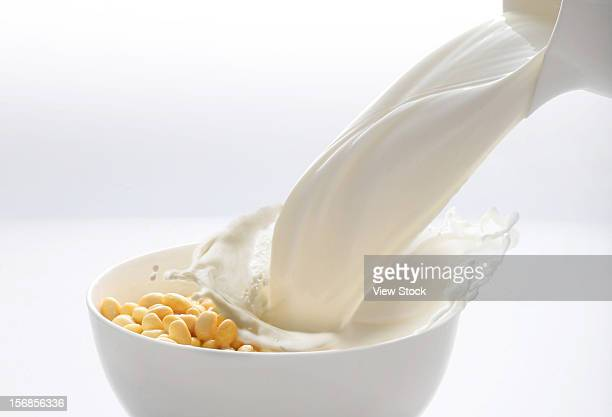 Soybean and milk