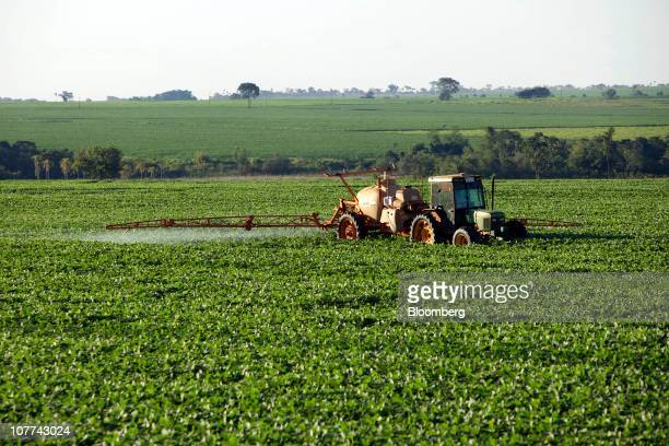 Soybean fields are sprayed with pesticide outside of Campo Nueve Paraguay on Friday Dec 17 2010 Soybeans have risen 30 percent this year amid concern...
