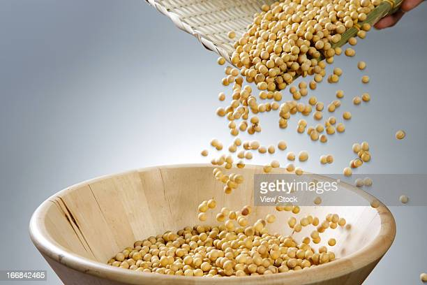 soybean - dustpan and brush stock pictures, royalty-free photos & images