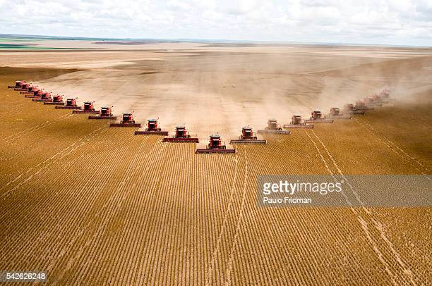 Soybeans are harvested at Fartura Farm in Mato Grosso state Brazil Brazil is the second largest soy producer worldwide