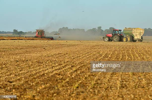 Soybeans are harvested near Los Indios Argentina on Sunday April 15 2012 South America's soybean crop will turn out smaller than expected a week ago...