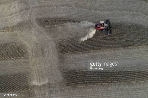 Soybeans are harvested with a Case IH Agricultural Equipment Inc combine harvester in this aerial photograph taken above Tiskilwa Illinois US on...