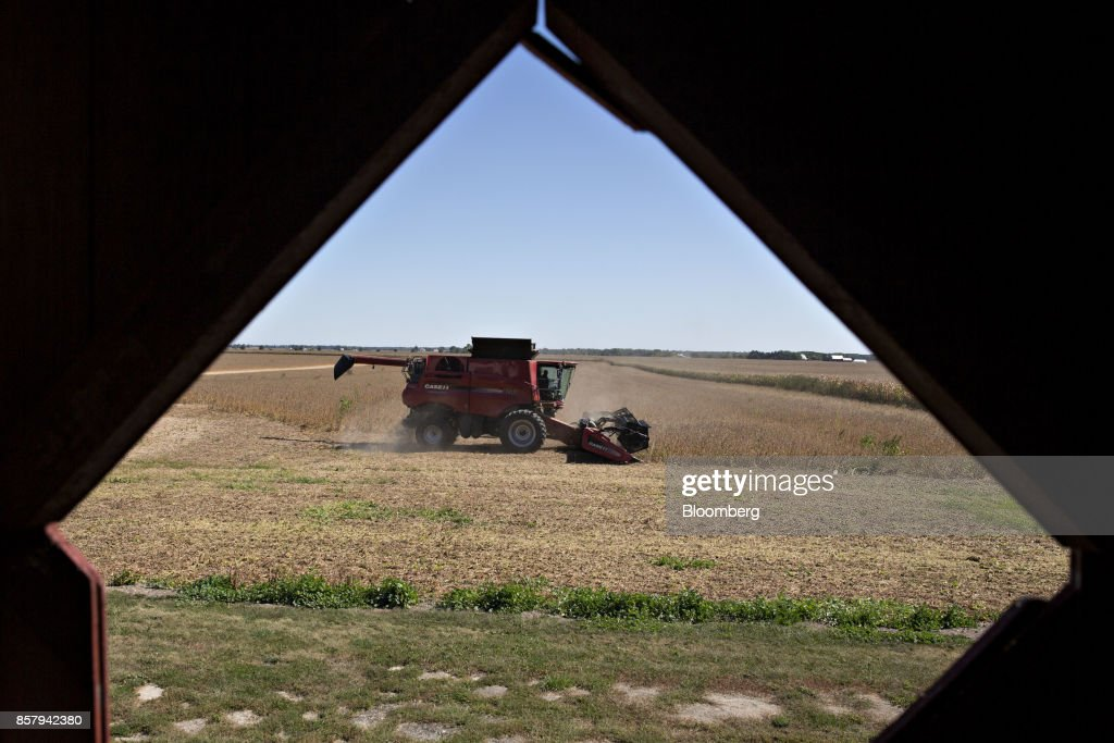 Soybeans are harvested with a Case IH Agricultural Equipment Inc. combine harvester in Princeton, Illinois, U.S., on Friday, Sept. 29, 2017. Soybean futures for November delivery rose 0.1% a bushel on the Chicago Board of Trade after falling as much as 0.5%, the lowest since September 13. Photographer: Daniel Acker/Bloomberg via Getty Images