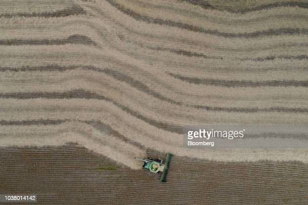 Soybeans are harvested with a Deere Co combine harvester in this aerial photograph taken above Tiskilwa Illinois US on Tuesday Sept 18 2018 With the...