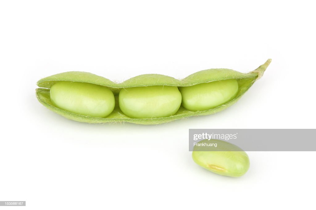 Soybeans : Stock Photo