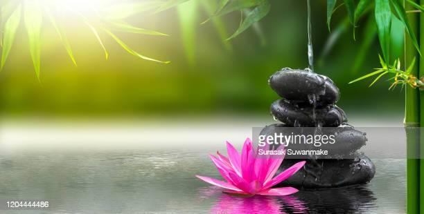spa massage, natural alternative treatment (hot stone massage) - boeddhisme stockfoto's en -beelden