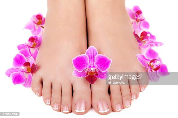 spa pedicure - pretty toes and feet stock photos and pictures