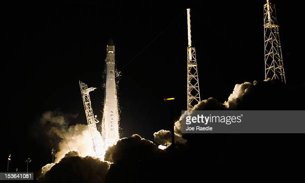 SpaceX Falcon 9 rocket attached to the cargo-only capsule called Dragon lifts off from the launch pad on October 7, 2012 in Cape Canaveral, Florida....