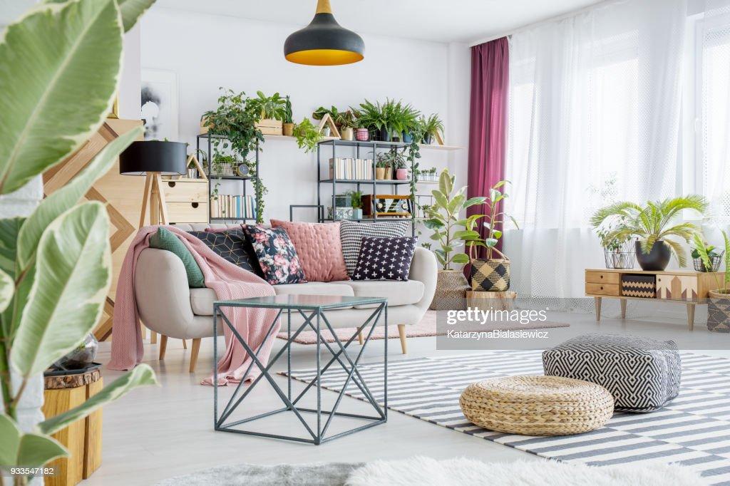 Sala de estar con plantas : Foto de stock