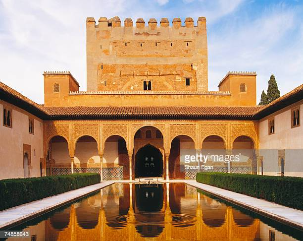 spain, analucia, granada, alhambra palace, court of myrtles reflected in pool - granada provincia de granada fotografías e imágenes de stock