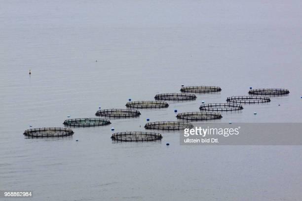Spain Andalucia - fish farm at Costa del Sol