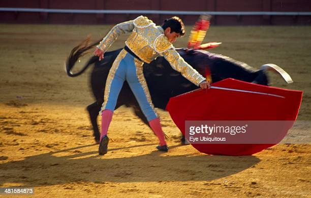 Spain Andalucia Seville Matador holding sword behind raised cape in passing move with charging bull in the bullring at a bullfight in Arenal District