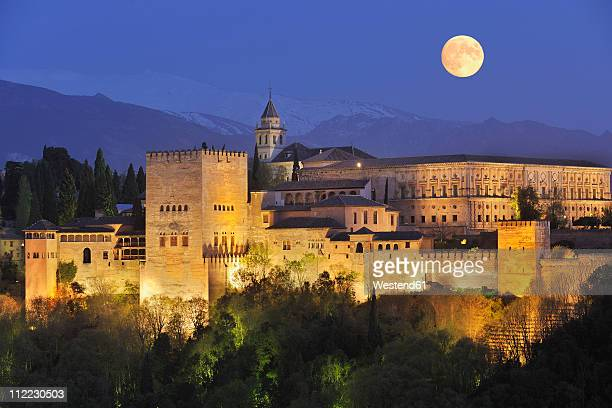 spain, andalusia, granada province, view of alhambra palace illuminated at night - granada provincia de granada fotografías e imágenes de stock
