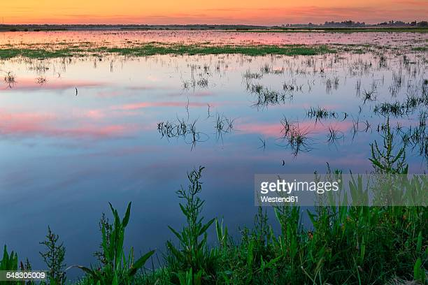 Spain, Andalusia, Huelva province, Donana National Park, Guadalquivir river