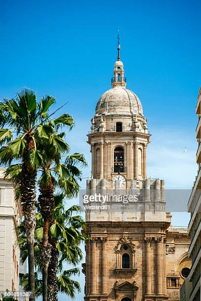 Spain, Andalusia, Malaga, Tower of the Cathedral of Malaga, Basilica of the Incarnation