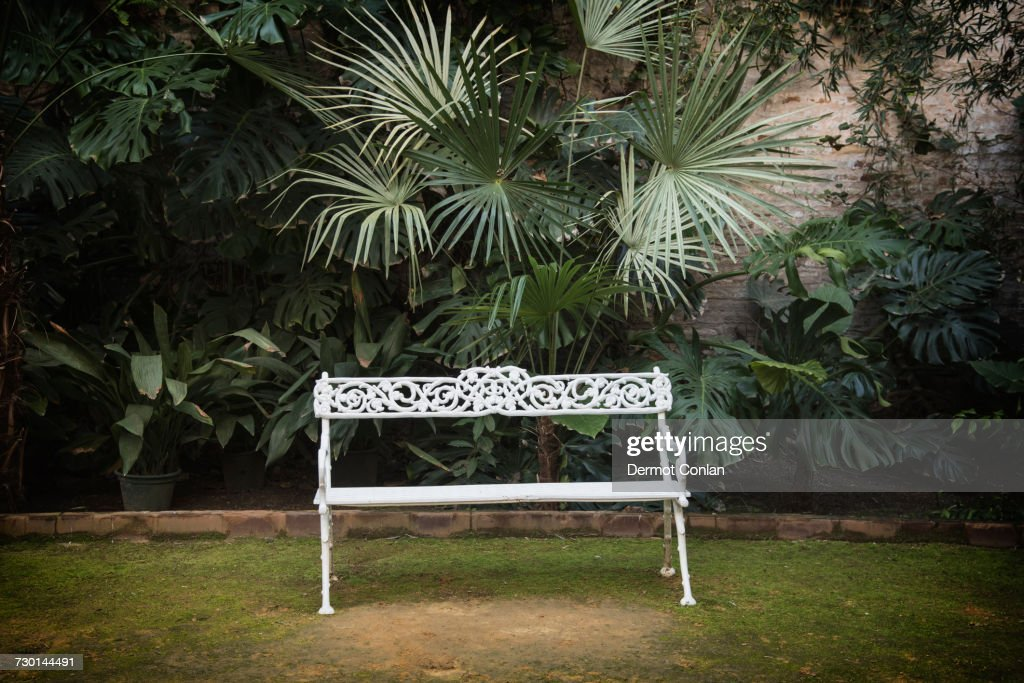 Spain, Andalusia, Seville, La Macarena, Ornate Garden Bench With Palm Plant  :