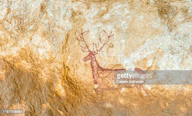 spain, autonomous community of aragon, sierra y caones de guara natural park, deer hidden in chimiacas into the cliffs of the rio vero canyon (between 12 000 and 5000 bc, levantines style) (unesco world heritage for the paintings in rock sites) - cave painting stock pictures, royalty-free photos & images