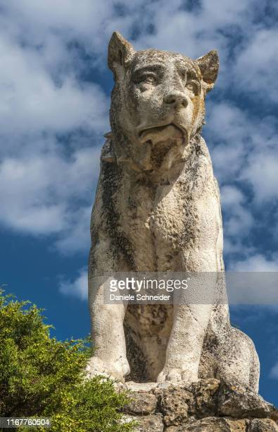 spain, autonomous community of castile and leon, province of burgos gorges de pancorbo, monument al pastor (sheep dog) - 1961 stock pictures, royalty-free photos & images
