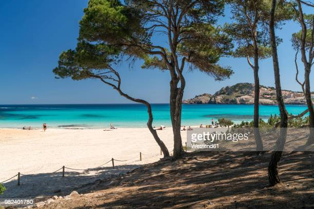 spain, balearic islands, mallorca, cala rajada, cala agulla, bay and beach - majorca stock pictures, royalty-free photos & images