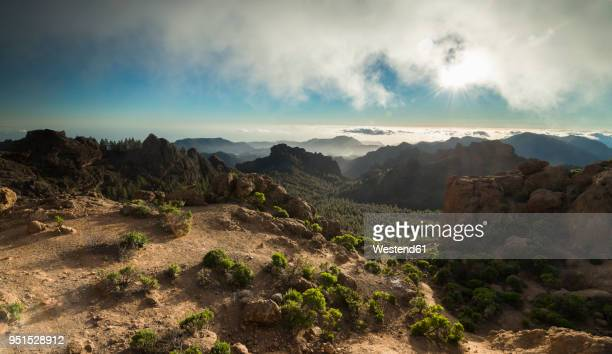 spain, canary islands, gran canaria, view from roque nublo - grand canary stock pictures, royalty-free photos & images