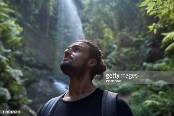 spain, canary islands, la palma, close-up of bearded man near a waterfall in the forest - aventura imagens e fotografias de stock