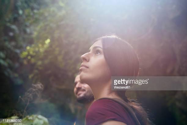 spain, canary islands, la palma, female hiker with boyfriend in a forest looking up - espiritualidad fotografías e imágenes de stock