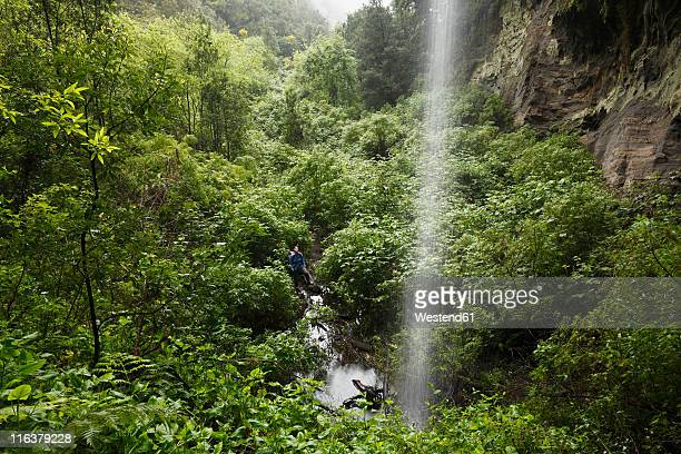 spain, canary islands, la palma, mature woman in nature reserve - biosphere planet earth stock photos and pictures