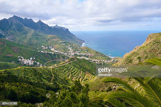 spain, canary islands, tenerife, anaga mountains, taganana - isla de tenerife fotografías e imágenes de stock