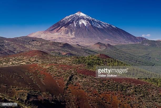 spain, canary islands, tenerife, exterior - pico de teide stock pictures, royalty-free photos & images