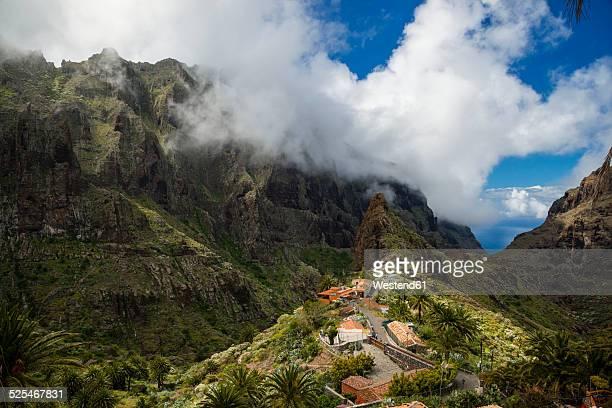 Spain, Canary Islands, Tenerife, Teno Mountains, Barranco de Masca, Village Masca