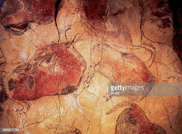 Spain Cantabria Cave of Altamira Upper Paleolithic Paintings Bison Polychrome ceiling Around Santillana del Mar World Heritage Site by UNESCO