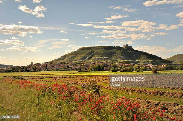 Spain Castilla y Leon Province of Burgos The village of Castrojeriz at the foot of a hill with fields all around
