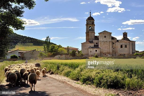 Spain Castilla y Leon Province of Burgos Village of Castrojeriz Here Santa Maria del Manzano's collegiate church