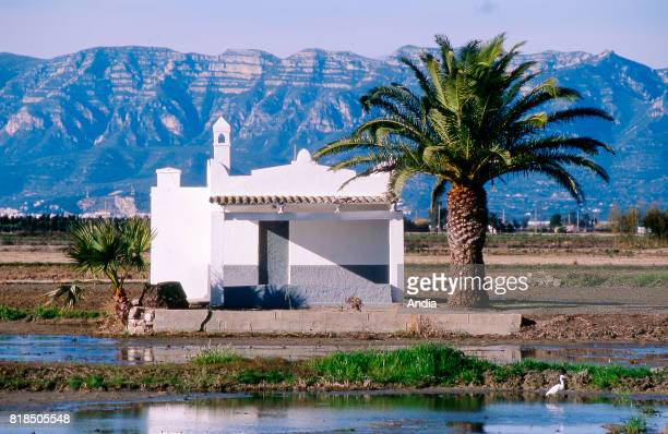 the Ebro Delta Nature Park part of the Unesco Biosphere Reserve network Traditional house with whitewashed walls and palm tree Poblenou and la serra...