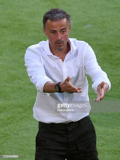 Spain coach Luis Enrique Martinez during the match between Spain and Sweden of Euro 2020, group E, matchday 1, played at La Cartuja Stadium on June...