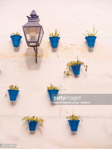 Spain, Cordoba, Flower Pots