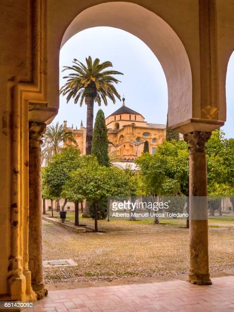 Spain, Cordoba, Mosque-Cathedral of Cordoba, Patio