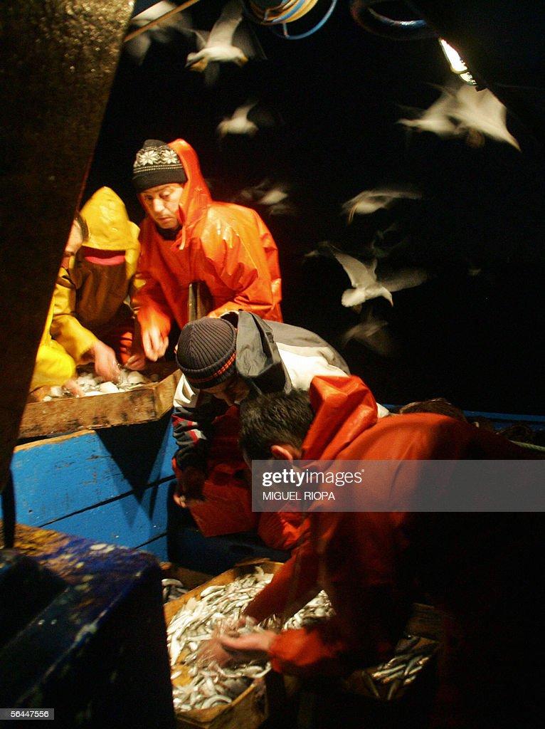 Crew members of the fishing trawler 'Die : News Photo