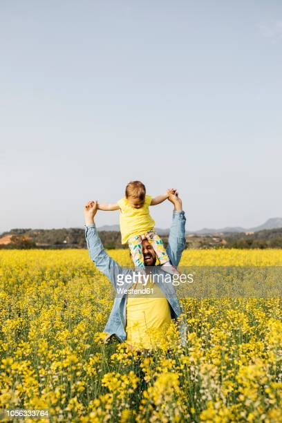 Spain, father and baby girl having fun  together in a rape field