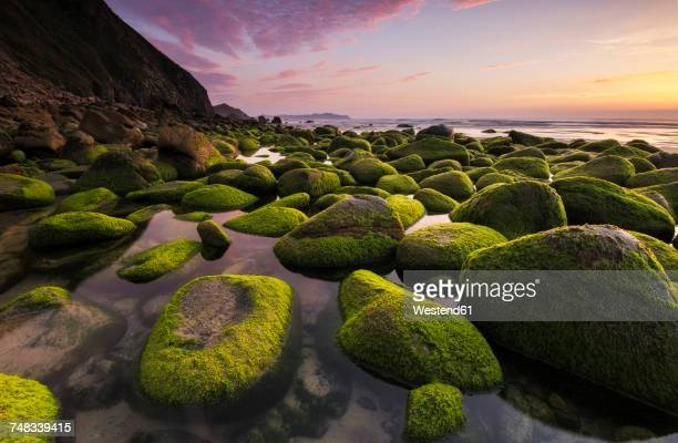 spain, galicia, campelo beach at sunset in valdovino - provincia de a coruña fotografías e imágenes de stock