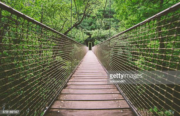 Spain, Galicia, Pontedeume, Suspension bridge in the natural park of Las Fragas Eume