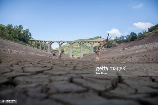 Spain is on its way to its worst drought in 20 years The marshes hold less than half of the water they can store with 4793% of reserves In Leon in...